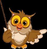 bird-teacher-owl-bird